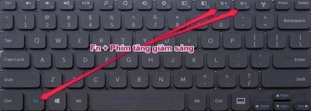 fn and phim tang do sang